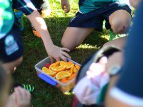 Flinders Rugby Club